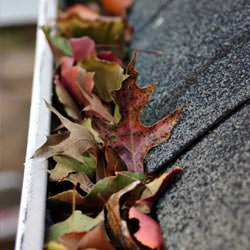 Clogged gutters filled with fall leaves  in North Little Rock
